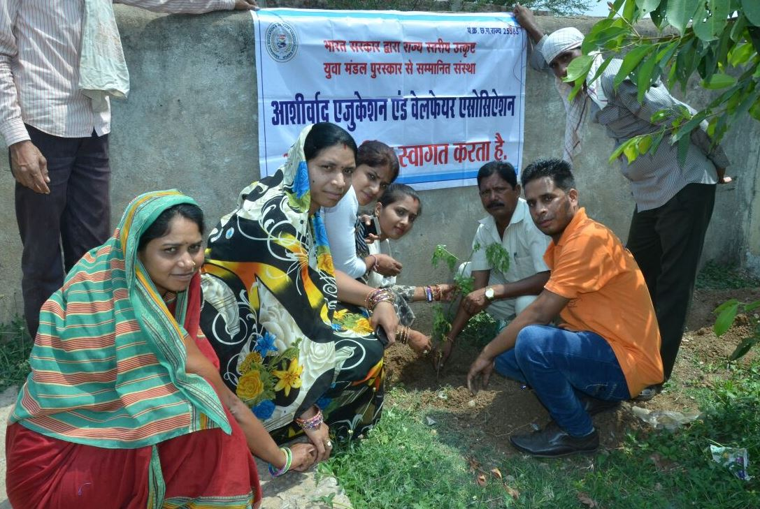 Plantation At Village